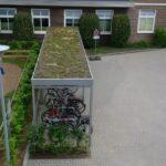 Fahrradüberdachung Economy mit Grünbedachung